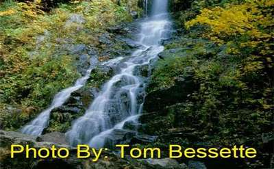 narrow waterfall dropping through the woods with photo credit to tom bessette