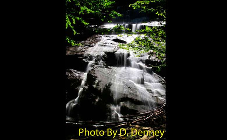 shallow waterfall in the woods with photo credit to d. denney