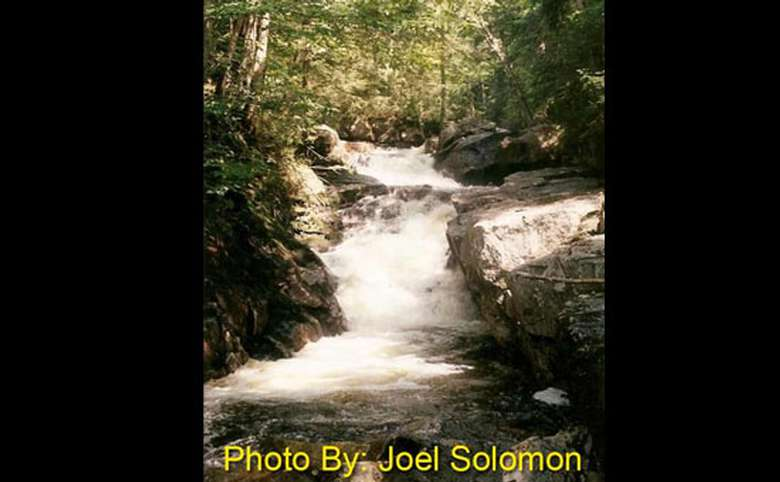 shallow waterfall running through the woods with photo credit to joel solomon