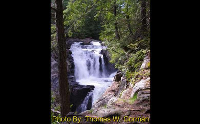 waterfall in the woods with photo credit to thomas w. gorman