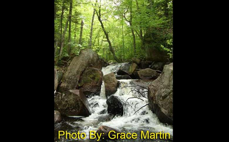 small waterfall in the woods with photo credit to grace martin