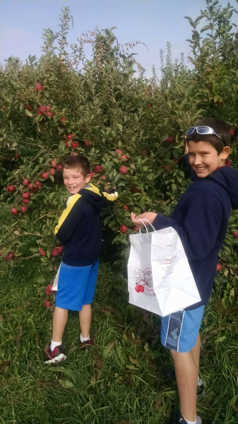 two kids picking apples