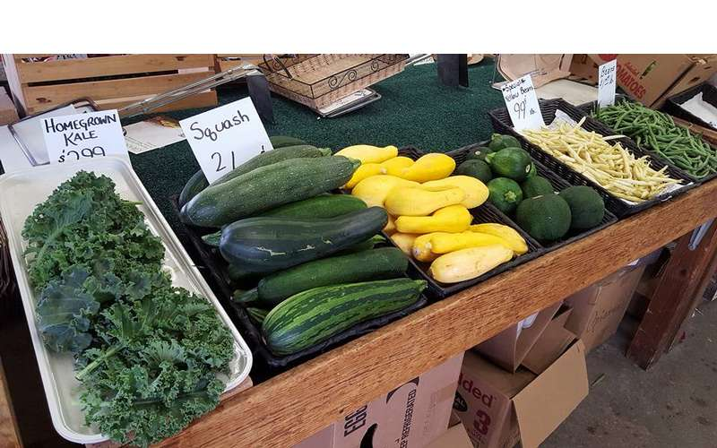 zucchini, summer squash, and other vegetables on display