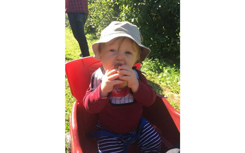 a toddler in a hat eating an apple