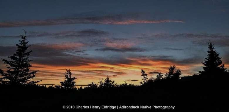 Sunset behind trees at Cadillac Mtn., Acadia National Park, Maine