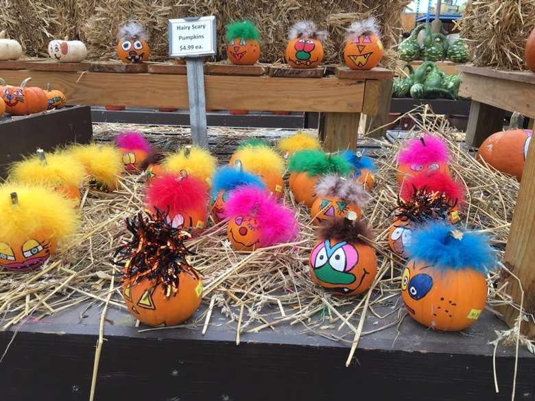 tiny pumpkins with painted faces and feathers glued to the top
