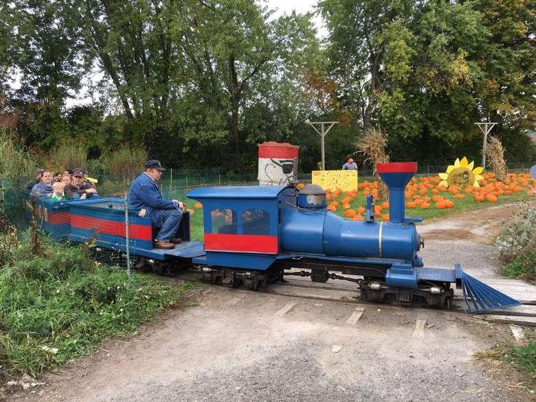 blue train riding through a pumpkin patch