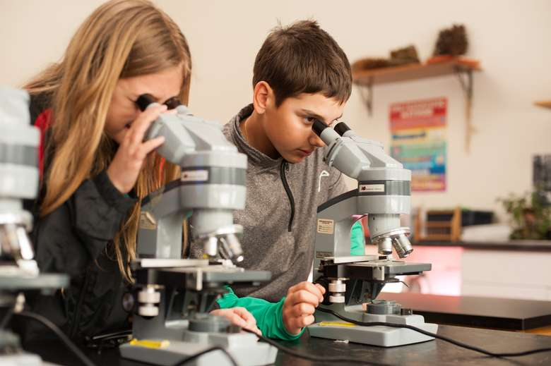 two students looking into microscopes