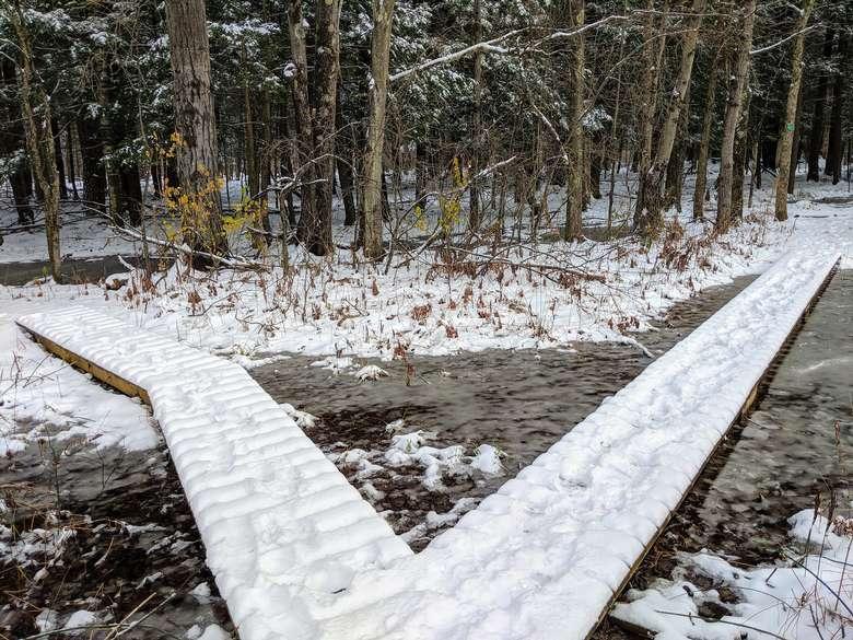 pathways in winter