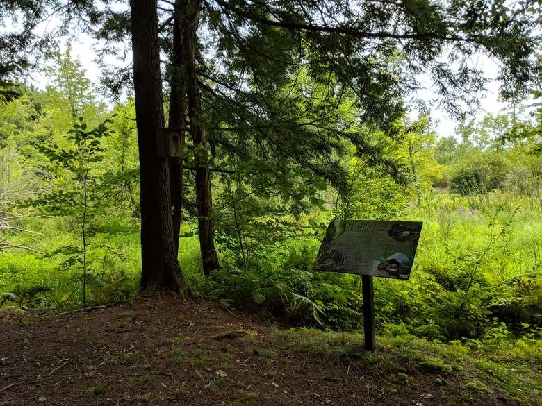 sign in preserve