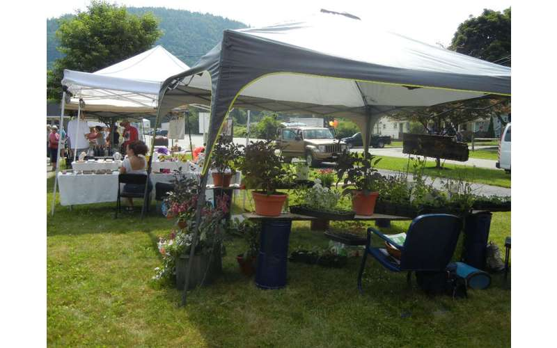 Chestertown Farmers' Market (3)