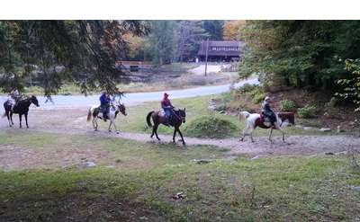four people riding horses