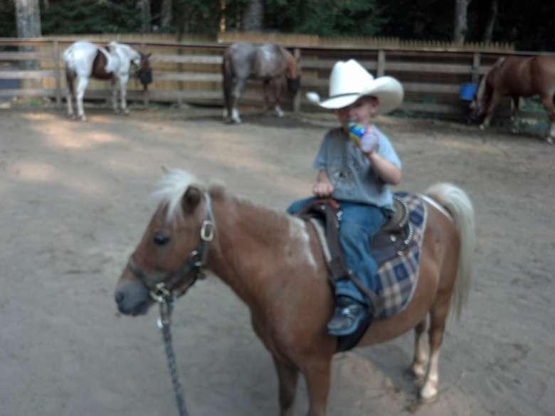 boy riding mini horse