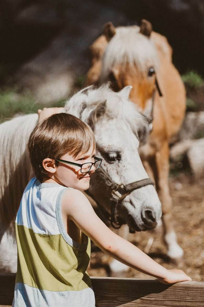two horses and a kid