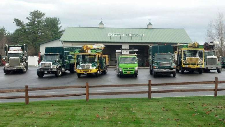 fleet of tree removal vehicles