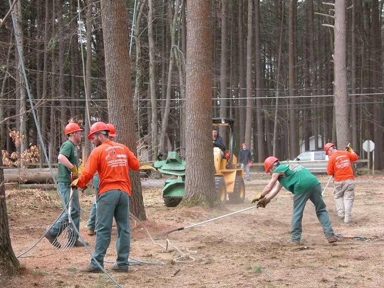 group of men raking in orange hard hats