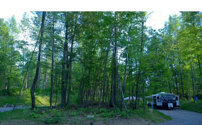 a RV parked at a campsite with lots of trees all around it