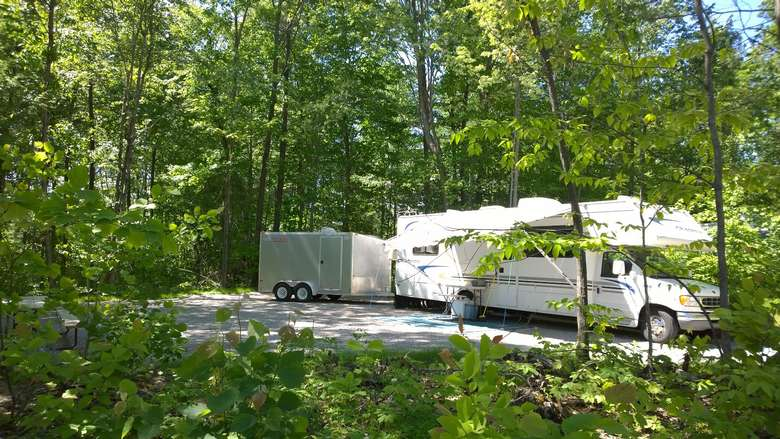 a lush RV campsites with lots of trees and brush near the RV
