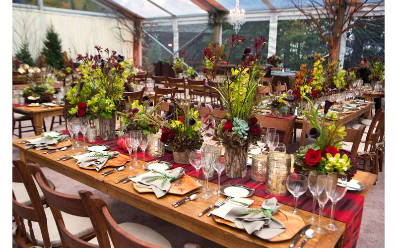 table decorates with plants