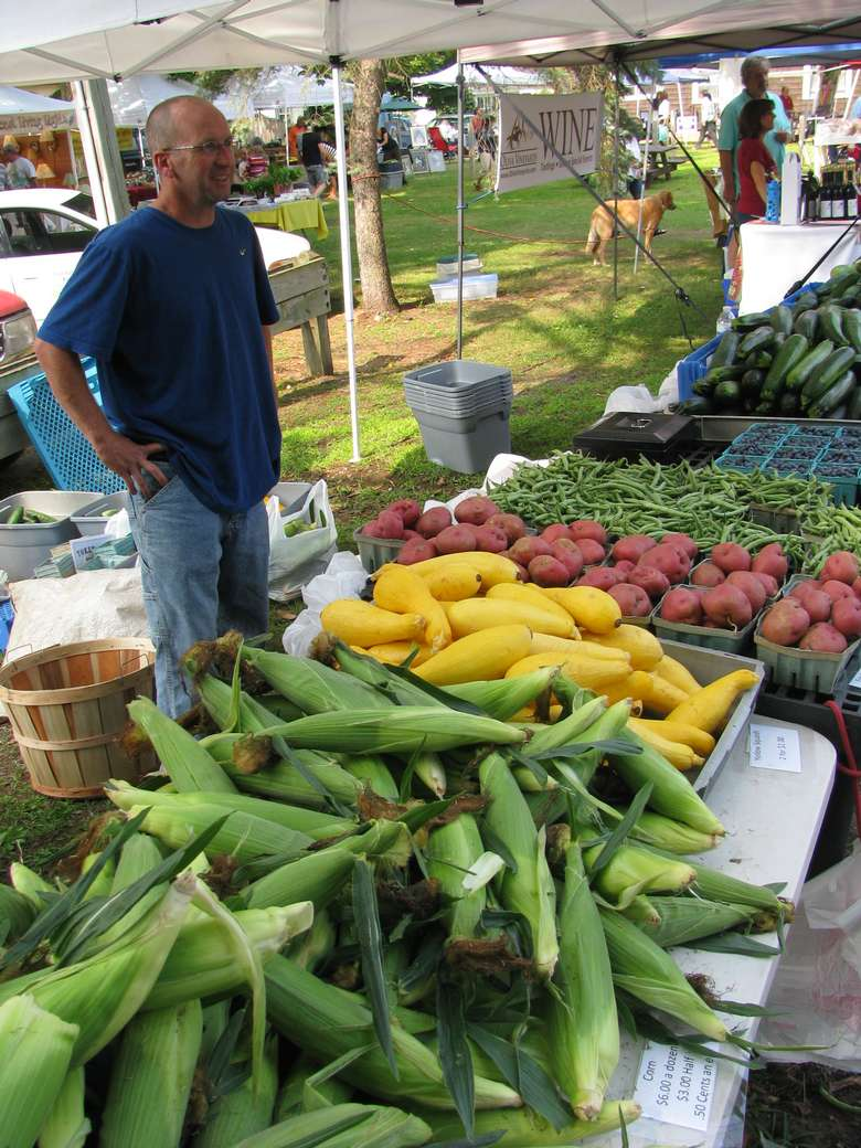 vendor booth with corn, yellow squash, red potatoes, and green beans