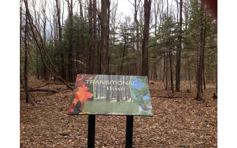 Dean Farm Heritage Trail - Handicap Accessible (6)