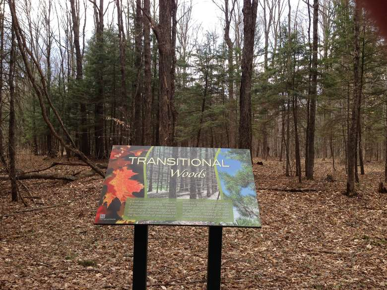 informative signage describing a transitional woods