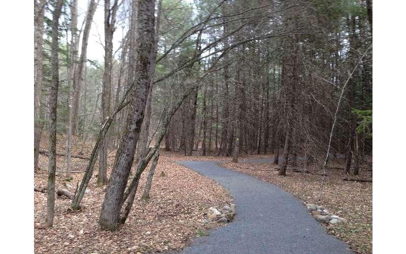 Dean Farm Heritage Trail - Handicap Accessible (8)