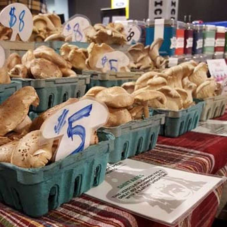 Mushrooms in baskets for sale
