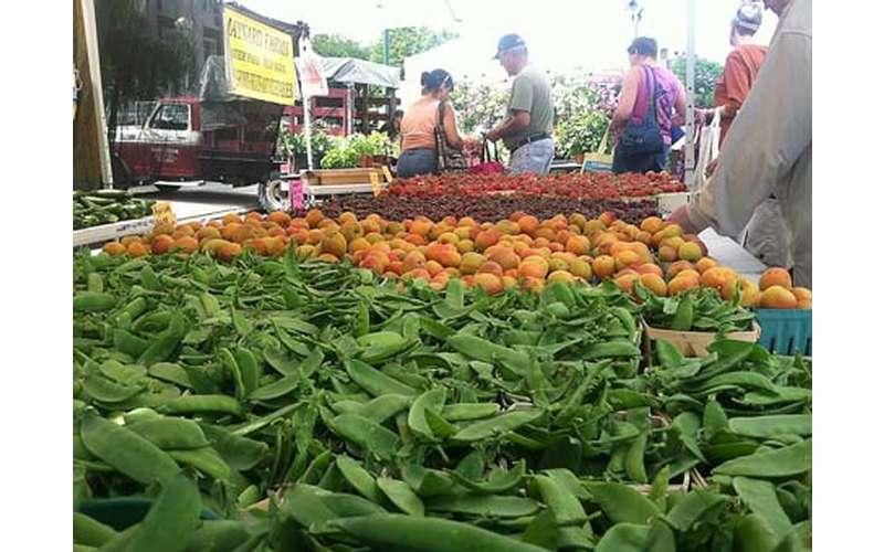 Schenectady Greenmarket (2)