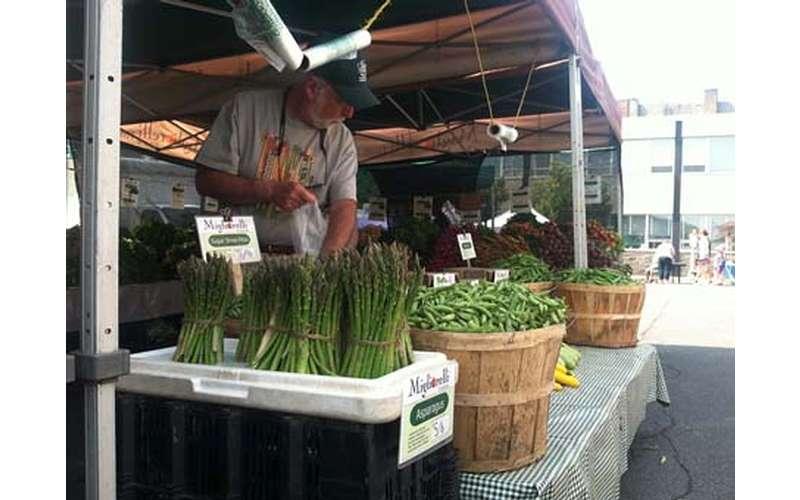Schenectady Greenmarket (22)
