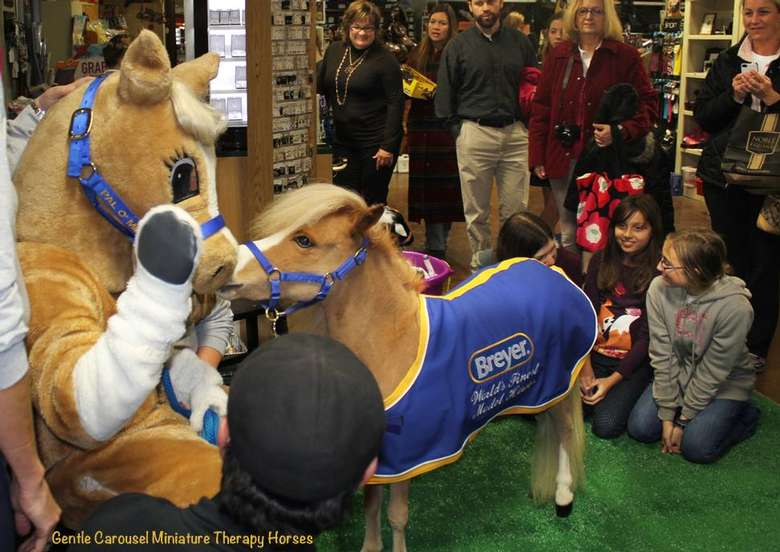 miniture horse wearing a blue blanket nuzzling someone in a horse costume