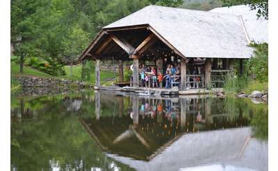 Examine the Wildlife around the Museum's Pond