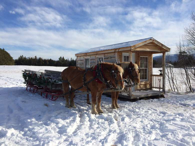a horse-drawn sleigh at a wooden cabin
