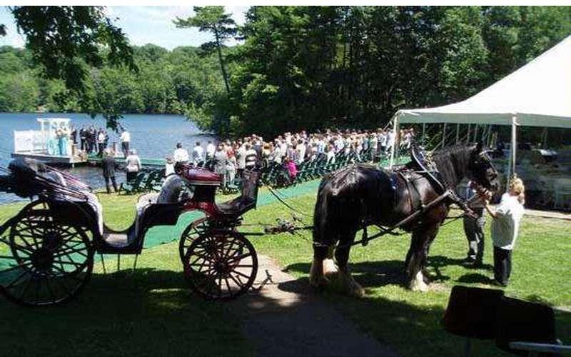 Crystal Cove Weddings (3)
