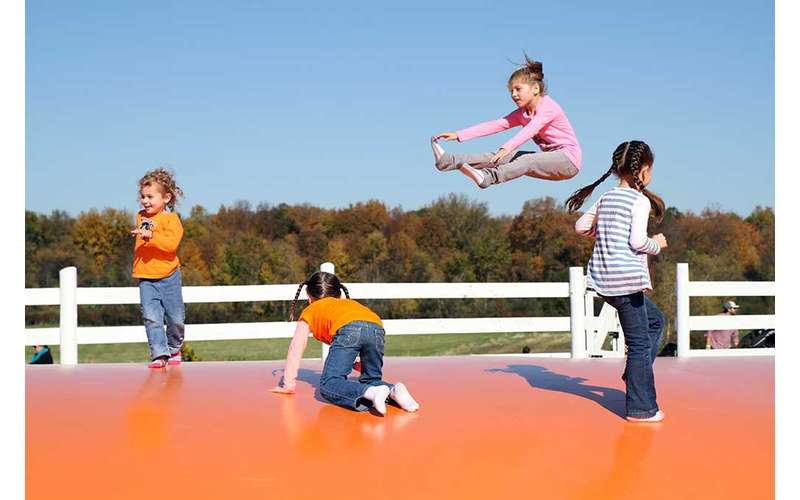 The outdoor jump pad will have your kids leaping for joy.