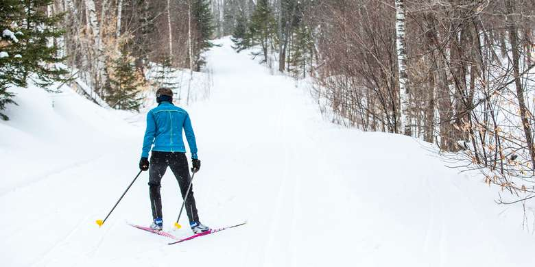 person in blue jacket cross country skiing along a path in the woods