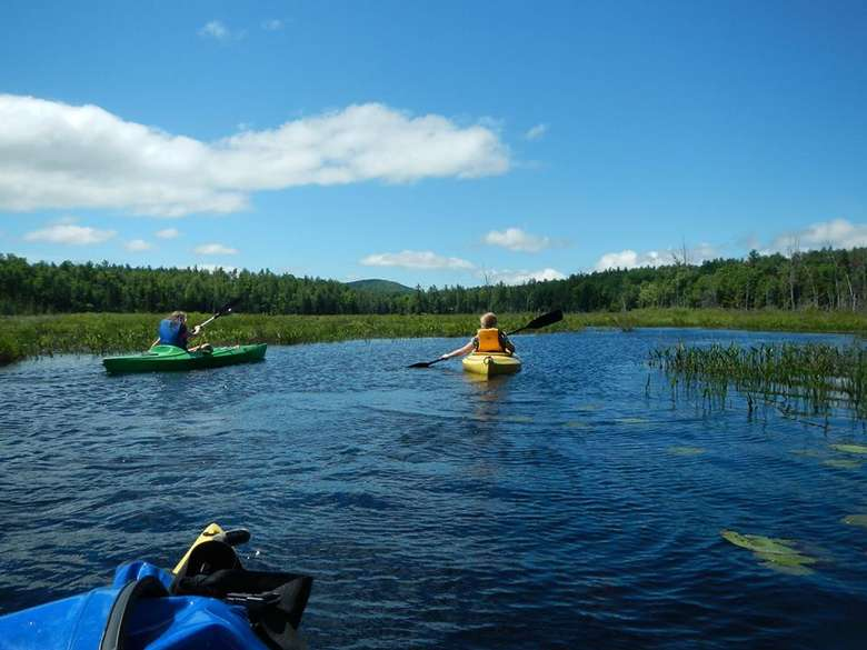 two people kayaking on a pond