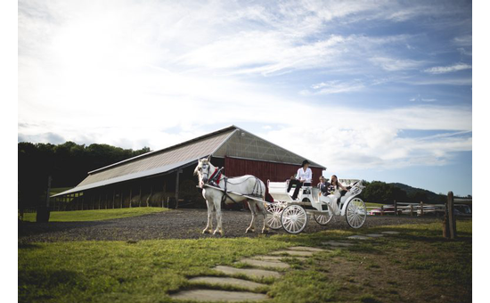 barn with horse-drawn carriage