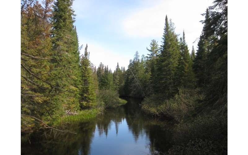 Adirondack Mt Land (17)
