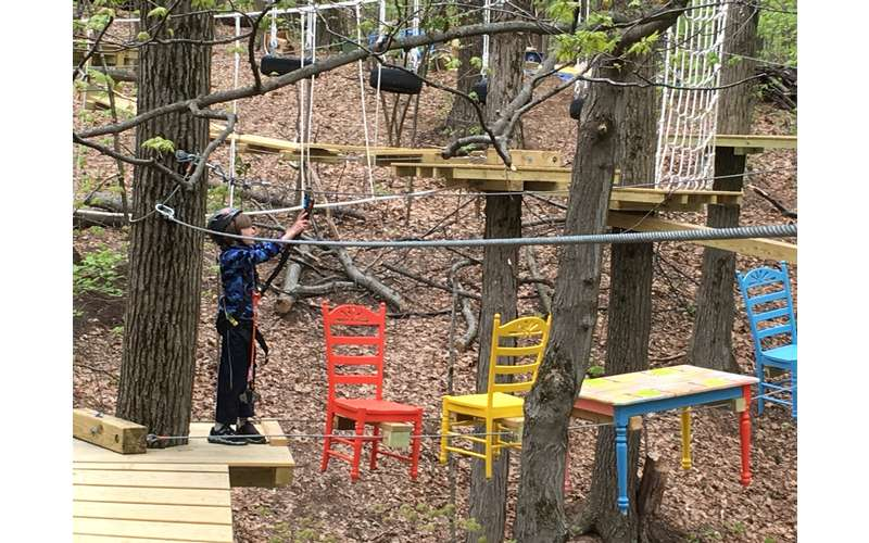 Do you think you could get through the Treetop Challenge Course?