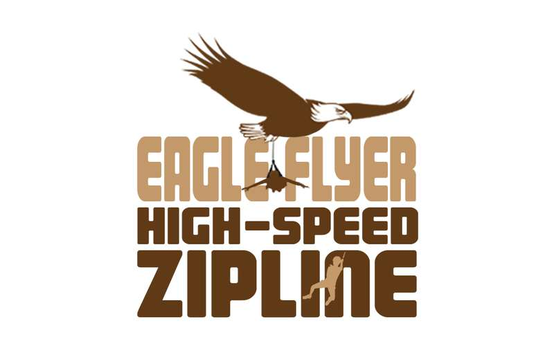 The Eagle Flyer logo