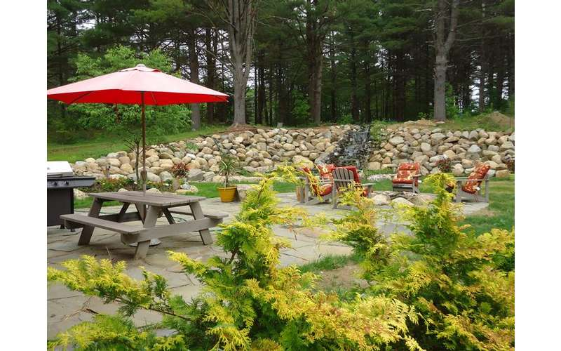 Landscaping, BBQ Grill and Picnic table on patio