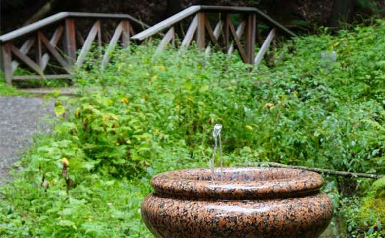 Ferndell Spring (2)