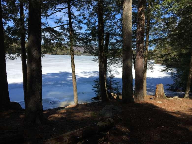 view of pharaoh lake through the trees