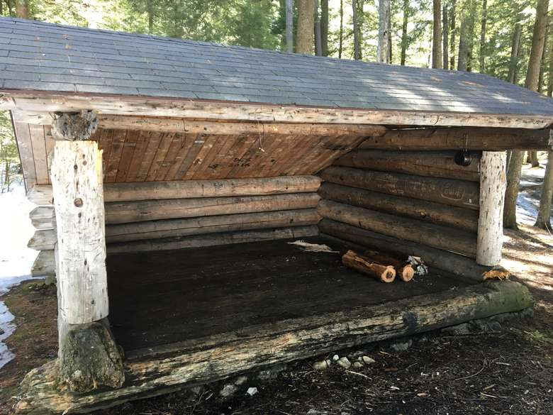 log lean-to in the woods
