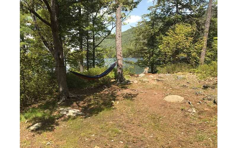 Hammock setup between two trees at Campsite #1 on Agnes Island