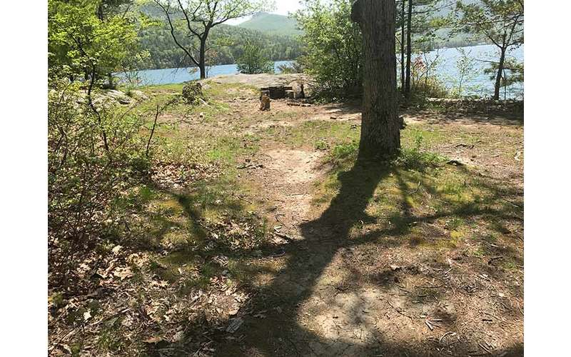 Flat ground for tents at Campsite #3 on Agnes Island in Lake George