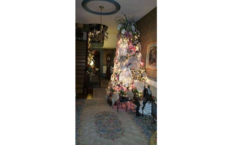 a beautifully decorated tree with lights inside a house