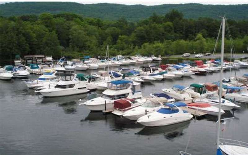 numerous motorboats parked at docks