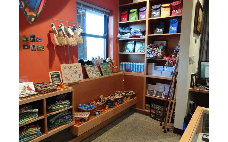 a mixture of gifts on shelves